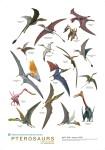 Non chiamateli dinosauri