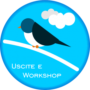 Uscite e Workshop di Birdwatching