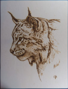 home decor Pyrography on wood Lynx