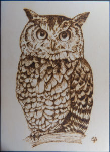 home decor Pyrography on wood Owl