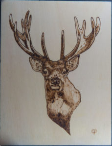 home decor Pyrography on wood deer