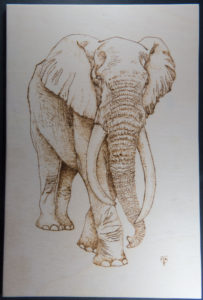 home decor Pyrography on wood elephant