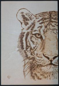 Pirografia su legno tigre