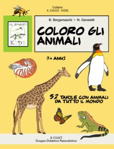 colorare gli animali