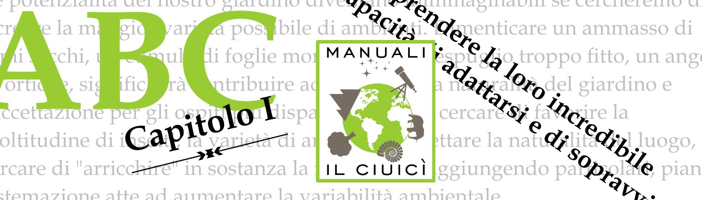 Libri eBook Manuali